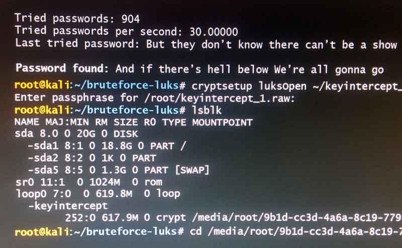 brute force programmer